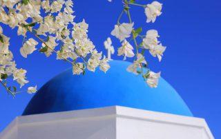 Blüten vor blauer Kuppel freie Trauung