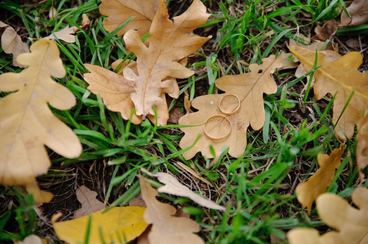 Freie Trauung Herbst